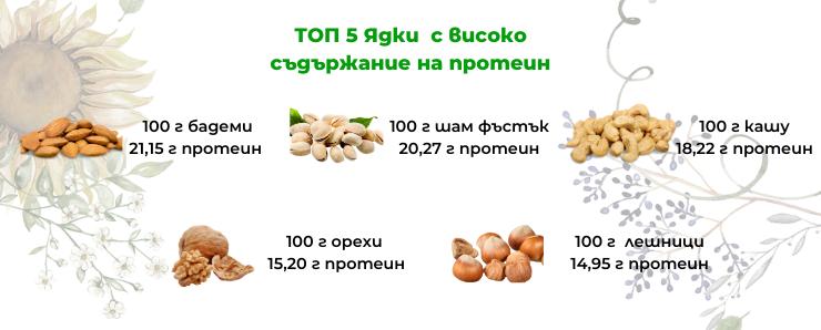 топ теп ядки с високо съдържание на протеин